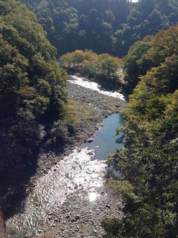 fujino_00.jpg